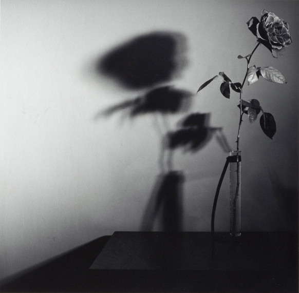 42.-robert-mapplethorpe-582x571